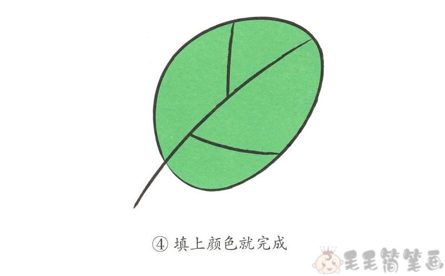 只需四步轻松学画漂亮的叶子