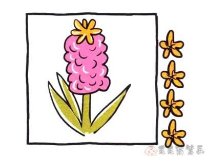 风信子鲜花简笔画,花朵少儿简笔画