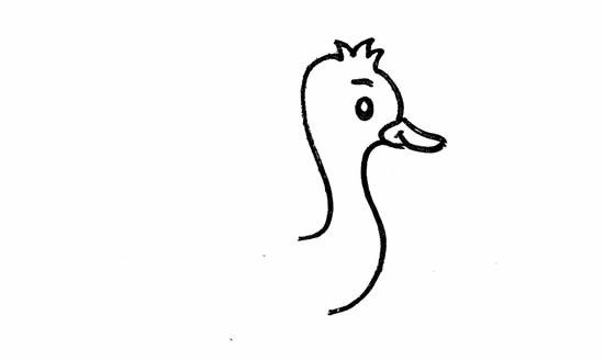 鸵鸟简笔画彩色图片 中级简笔画教程-第2张