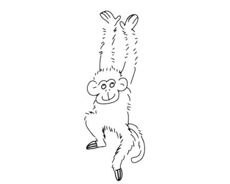 简单好看的猴子简笔画 中级简笔画教程-第10张