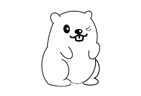 松鼠简笔画彩色可爱 松鼠怎么画悦目又简朴 中级简笔画教程-第4张