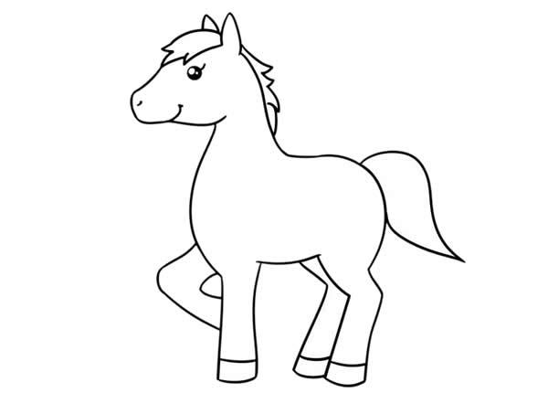 漂亮的小马简笔画画法步骤步骤图片大全 动物-第5张