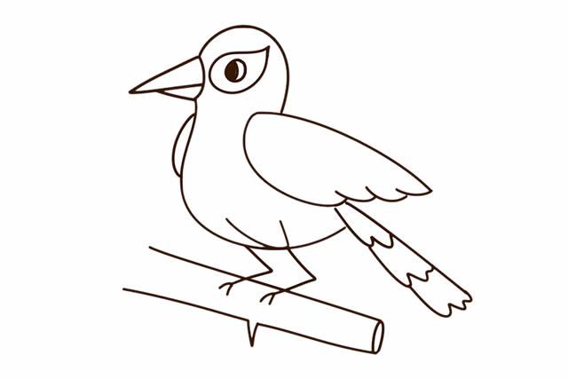 黄鹂鸟简笔画彩色图片 动物-第1张