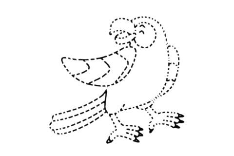 鹦鹉儿童简笔画步骤图片 中级简笔画教程-第11张