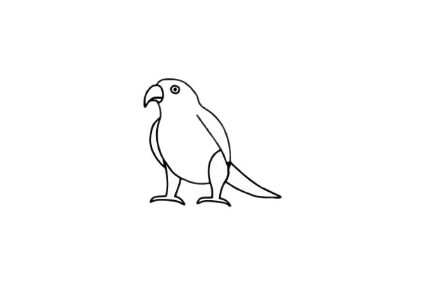 鹦鹉儿童简笔画步骤图片 中级简笔画教程-第7张
