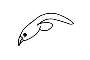 海鸥简笔画简单画法教程 初级简笔画教程-第5张