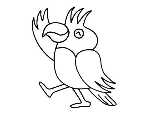 鹦鹉儿童简笔画步骤图片 中级简笔画教程-第12张