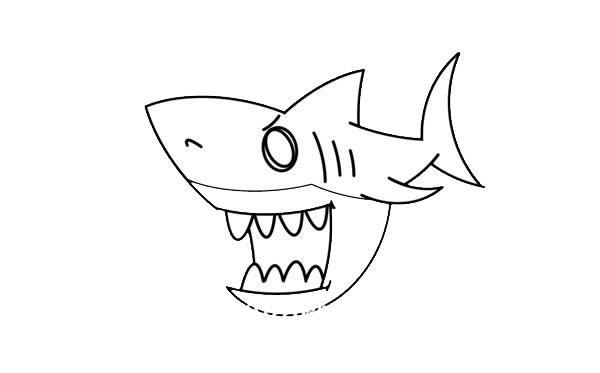 凶狠的鲨鱼简笔画画法步骤 中级简笔画教程-第6张