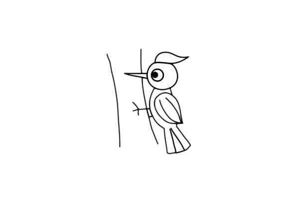 啄木鸟怎么画,儿童简笔画啄木鸟画法 中级简笔画教程-第7张