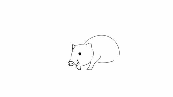 豪猪怎么画,豪猪简笔画图片 动物-第4张