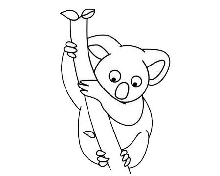 考拉简笔画简单画法 初级简笔画教程-第10张