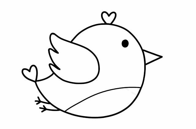 彩色小鸟的简画法 初级简笔画教程-第5张