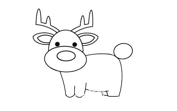 驯鹿怎么画简朴又悦目 驯鹿简笔画步骤画法教程 中级简笔画教程-第6张