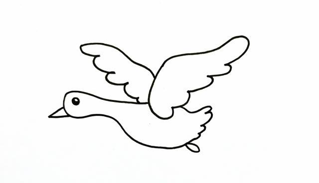 大雁简笔画画法步骤步骤图片教程 动物-第4张