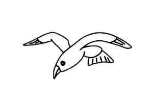 海鸥简笔画简单画法教程 初级简笔画教程-第2张