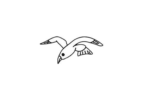 海鸥简笔画简单画法教程 初级简笔画教程-第1张