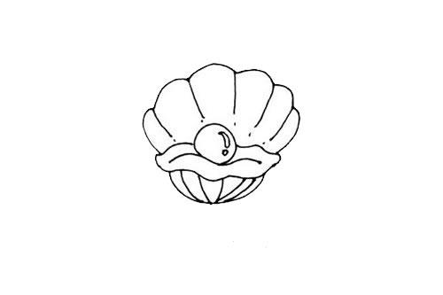 珍珠贝壳简笔画画法步骤步骤图片 动物-第5张