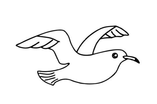 海鸥简笔画简单画法教程 初级简笔画教程-第12张