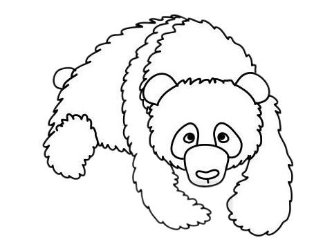 怎么画熊猫简单画法 初级简笔画教程-第10张