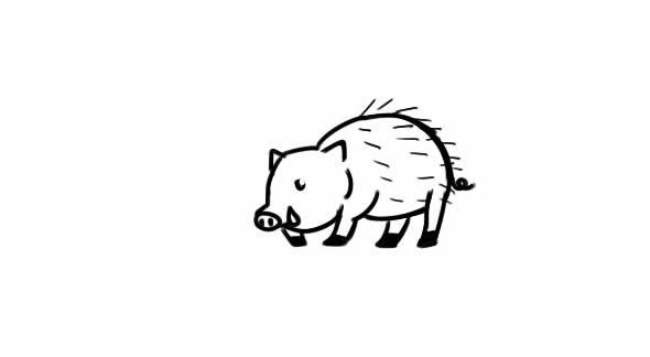 豪猪怎么画,豪猪简笔画图片 动物-第1张