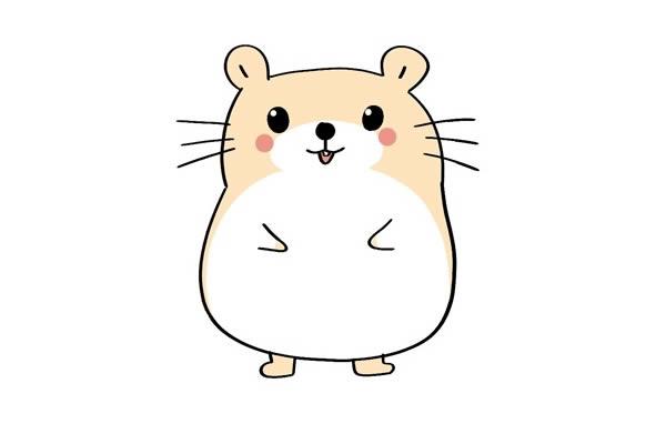超萌可爱小仓鼠简笔画 卡通仓鼠简笔画彩色画法 中级简笔画教程-第1张