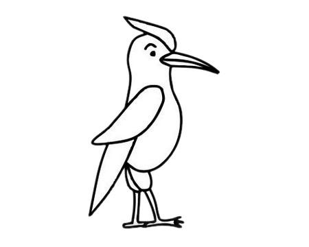 啄木鸟怎么画,儿童简笔画啄木鸟画法 中级简笔画教程-第8张