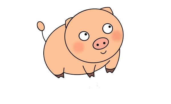 呆萌小猪简笔画图片 中级简笔画教程-第1张