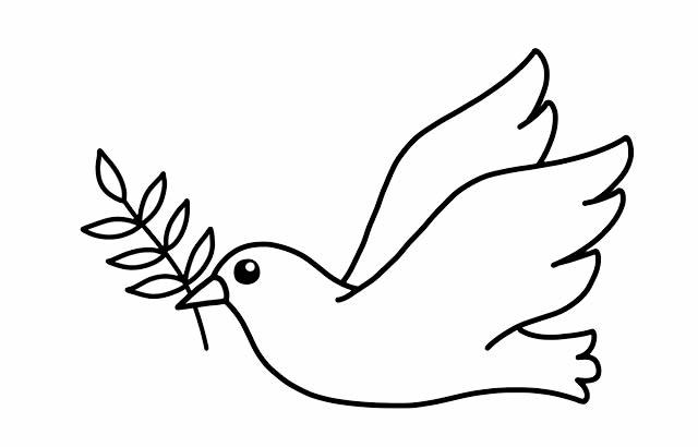 怎么画鸽子简笔画 初级简笔画教程-第6张