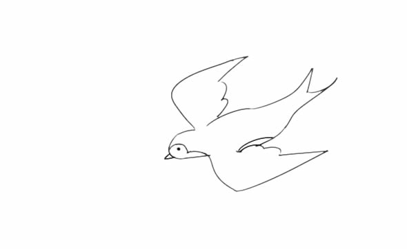 教小朋友画燕子简笔画 中级简笔画教程-第5张