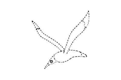 海鸥简笔画简单画法教程 初级简笔画教程-第10张