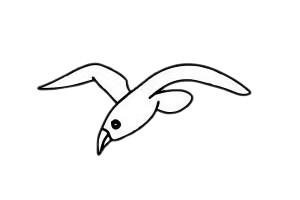 海鸥简笔画简单画法教程 初级简笔画教程-第6张