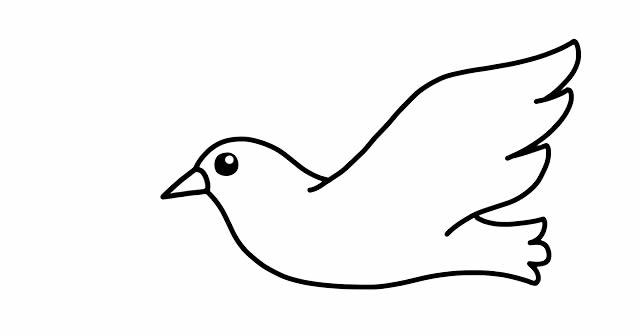怎么画鸽子简笔画 初级简笔画教程-第4张