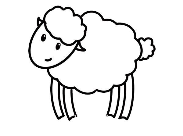 简笔画绵羊的画法步骤步骤图片 动物-第6张