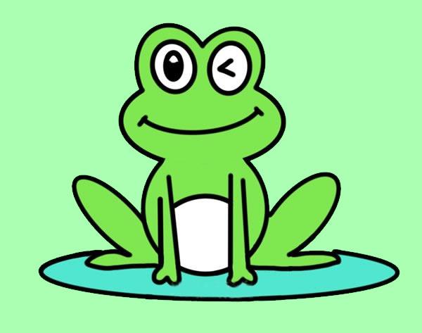 荷叶上的青蛙简笔画彩色 动物-第1张
