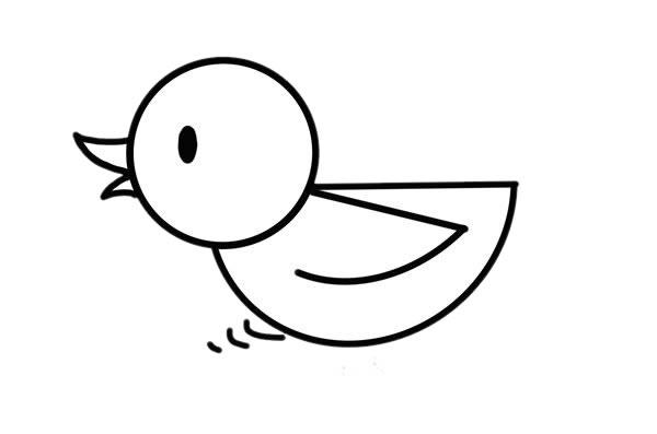 水中的小黄鸭简笔画画法步骤步骤图片 动物-第5张