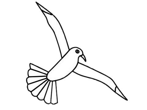 海鸥简笔画简单画法教程 初级简笔画教程-第9张
