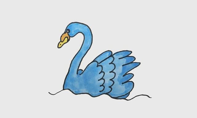 天鹅简笔画彩色画法步骤步骤图片 动物-第1张