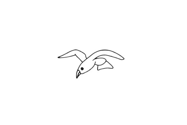 海鸥简笔画简单画法教程 初级简笔画教程-第7张