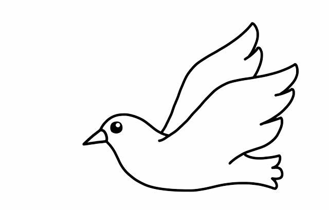 怎么画鸽子简笔画 初级简笔画教程-第5张