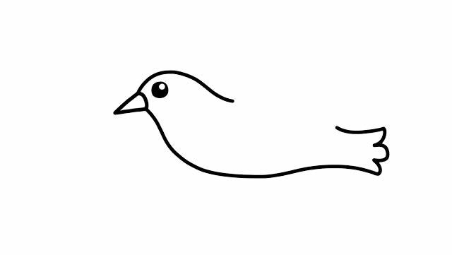怎么画鸽子简笔画 初级简笔画教程-第3张