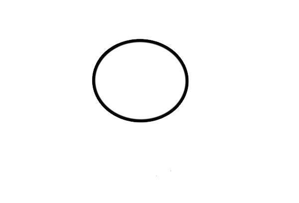 卡通考拉简笔画画法步骤步骤图片 中级简笔画教程-第2张