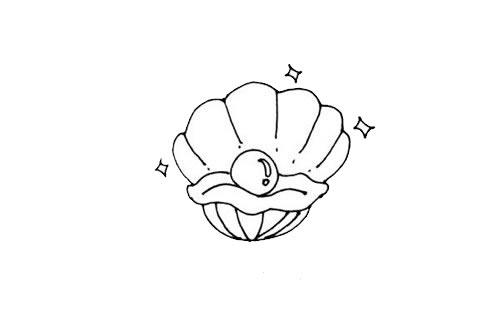 珍珠贝壳简笔画画法步骤步骤图片 动物-第6张