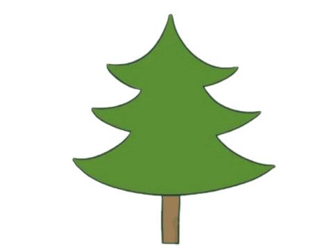 教小朋友画简单的松树简笔画 初级简笔画教程-第6张