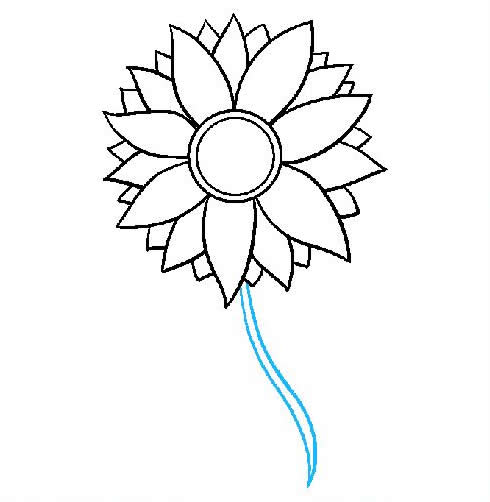 向日葵简笔画步骤图片大全 植物-第7张