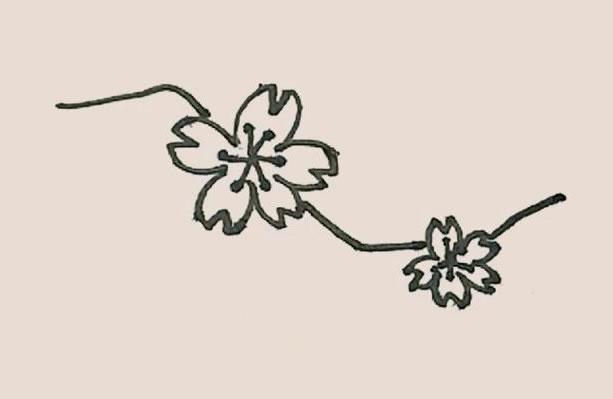 桃花简笔画的画法步骤图解教程 中级简笔画教程-第7张