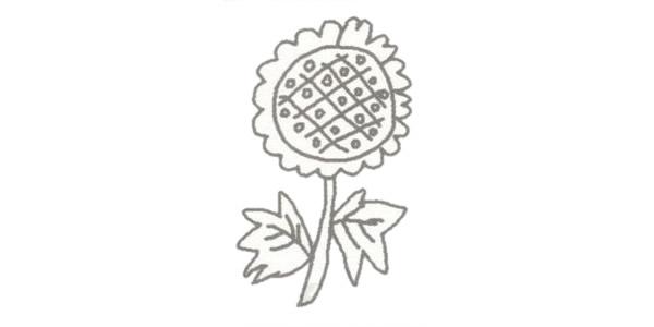 向日葵简笔画的画法步骤图教程 植物-第4张