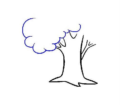 枝繁叶茂的大树简笔画步骤图片大全 植物-第7张