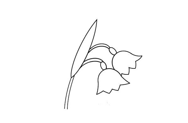 彩色的铃兰花简笔画 中级简笔画教程-第4张