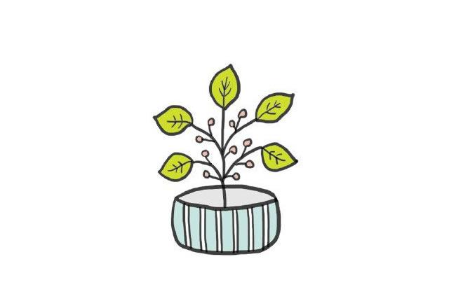 植物盆栽简笔画图画带颜色 中级简笔画教程-第1张