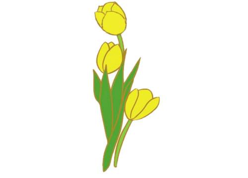 郁金香简笔画,花朵简笔画大全 初级简笔画教程-第8张